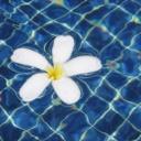 Aqua aerobik - cvičení, které šetří klouby a posiluje kondici