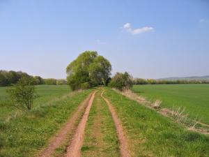 Chůze s hůlkami - Nordic walking