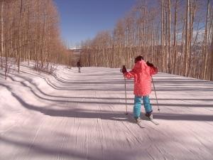 """Rekreační běh na lyžích je ekonomičtější než """"normální """" běh"""