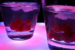Proč lidé pijí, a jak lze úspěšně abstinovat?