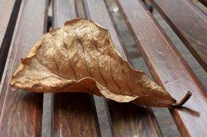 Deset příznaků, které ženám signalizují menopauzu