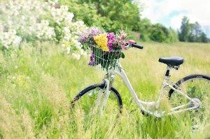 Jarní péče o pleť - bylinky a procházky přírodou
