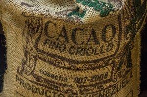 Kakao jako antidepresivum a zdroj cenných vitaminů