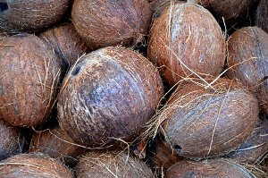 Kokosový ořech chrání před rizikem rakoviny žaludku