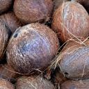coconut-1583223_960_720.jpg