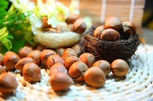 Ořechy pomáhají snížit hladinu cholesterolu a brání stárnutí