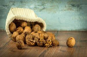 Ořechy prospívají nejen těhotným ženám a lidem s cukrovkou