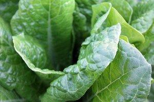 Potraviny, které si poradí se zanícenou pletí