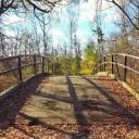 Procházky v přírodě přinesou radost do života a zlepší vaše mozkové funkce