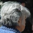 Šedivé vlasy zakryjí kvalitní barvy, ale také jim může pomoci příroda