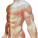 Svalová dystrofie - geneticky podmíněné onemocnění svalů