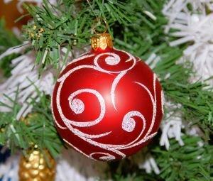 Vánoční stromek - živý nebo umělý?